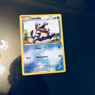 Pokemon Card