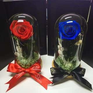 Preserved rose / enchanted rose / rose terrarium / flowers / gifts / presents / rose
