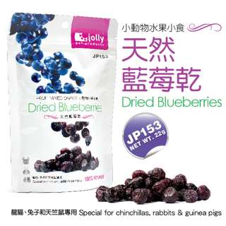 [Buy 3 Pay 2] Jolly Dried Blueberries 22g  (Jurong West)