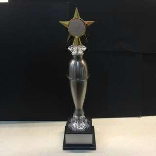 Pewter Trophy