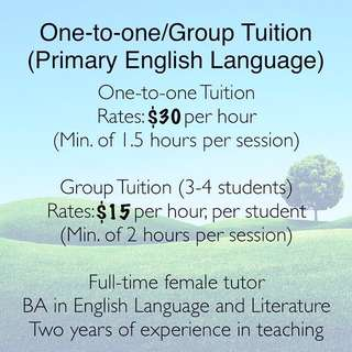 1-1/Group Tuition