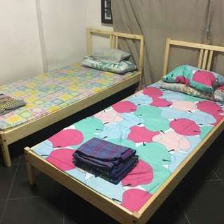common for rent (female only)
