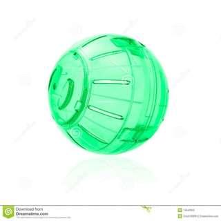 Hamster ball and wheel