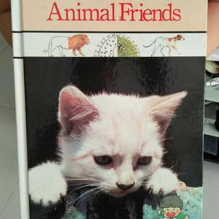 Animal friends -cat