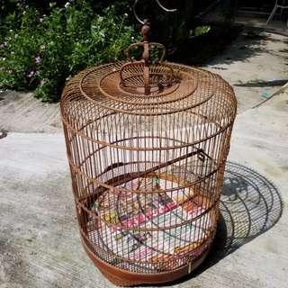 Shama cage 23'