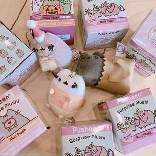 Pusheen surprise box