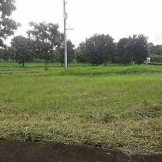 Tagaytay Royale Tagaytay Estates Lot For Sale