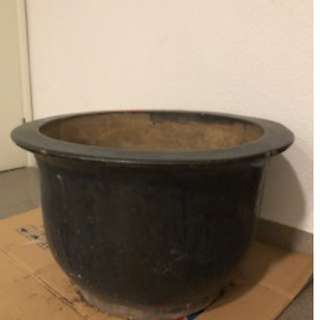 Garden plant pot