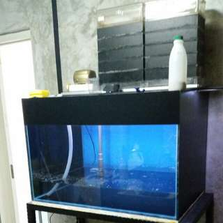 3ft x 2ft x 2ft tank with full accessories for sale