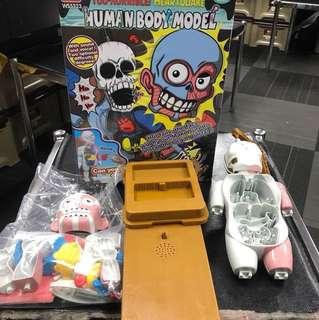 驚嚇人體模型玩具 人體器官組裝遊戲~刺激有趣