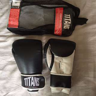 Titans Boxing Gloves