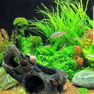 Aquarium Decoration Trunk Driftwood Cave