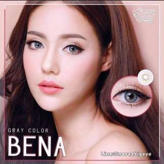 Bena Series Contact Lens - Gray/Brown