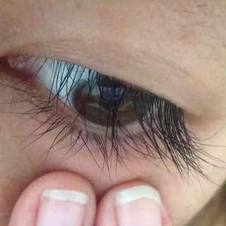 美國正品BIMAX睫毛增長液