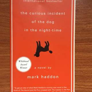 The Curious Case of the Dog in the Nightime