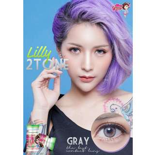 Lily 2 Tone Series Contact Lens - Gray/Brown