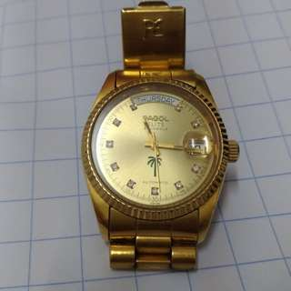PAGOL elite 25 jewels (automatic)