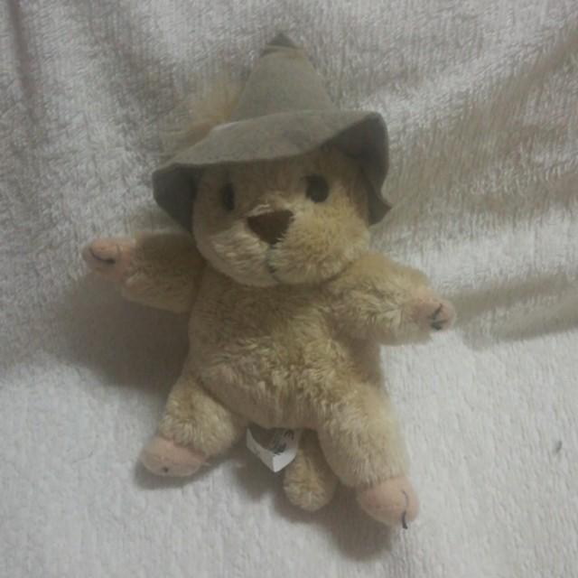 Groundhog Musical Plush Toy