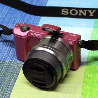 Sony Alpha a5000 Mirrorless Digital Camera with 16-50mm OSS Lens (pink)