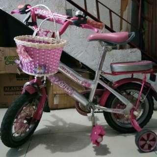 Girls bike for kids