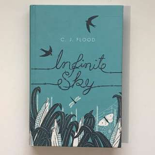 Infinite Sky by C. J. Flood (Hardback, 2013)