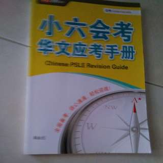 Chinese PSLE Revision Guide