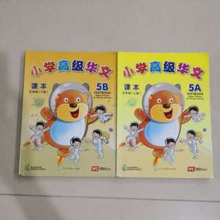 P5 higher Chinese textbook 5A/B