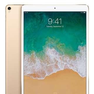 """全新 New iPad Pro 10.5"""" 4G 512g ,金色 原封"""