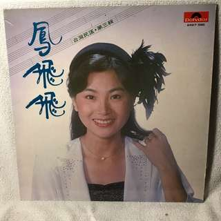 """Fong Fei Fei Hokkien Songs 12"""" LP Record - Pl refer to the record covers."""