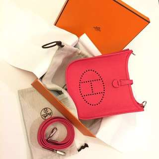 Hermes Evelyn Mini TPM