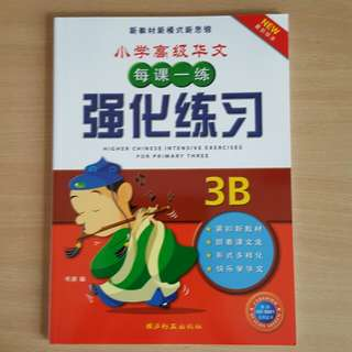 Brand New Primary 3  higher chinese assessment book