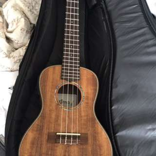 Brand new ukelele (can be connected to a base)