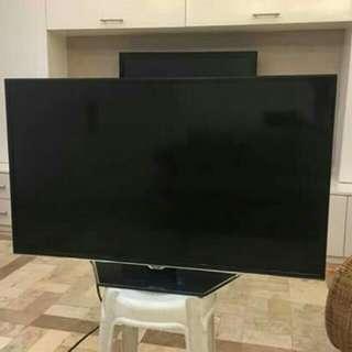 """TCL 40"""" LED TV"""