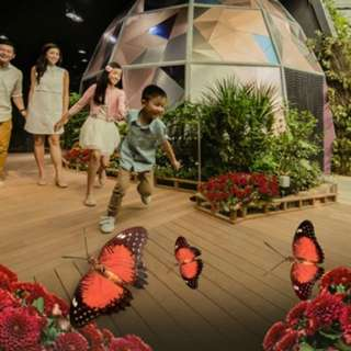 3in1 Science Centre + 🐛Omni Theatre + NEW! Butterflies Up-Close