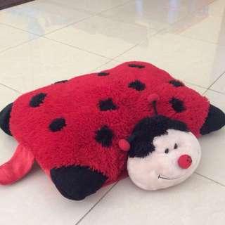 Pillow beetle