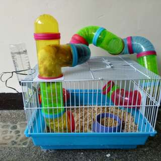 hamster cage plus 2 pairs of hamster