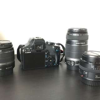 Canon DSLR + Lenses