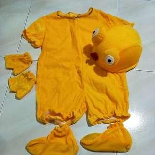 Costume Fish