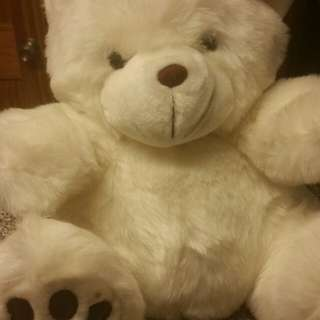 Universe Trading White Brown Teddy Bear Stuffed Animal Fluffy Toy