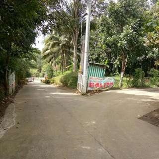 Farm Lot In Amadeo Cavite