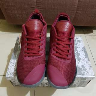 REPRICED! Nike Lebron Zoom XDR