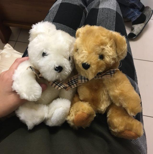 泰迪熊 娃娃