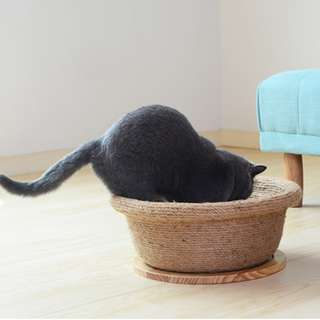 385. Cat Scratching Bed