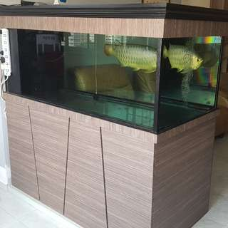 Fish Tank and arowana for sales
