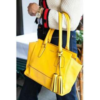 Coach hand bag  100% original..85%