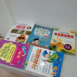 Assorted chinese assessment book /guide book
