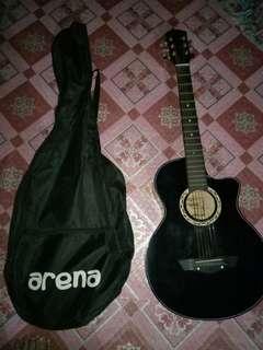 Acoustic Guitar (arena)