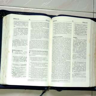 CHINESE-ENGLISH BIBLE NIV