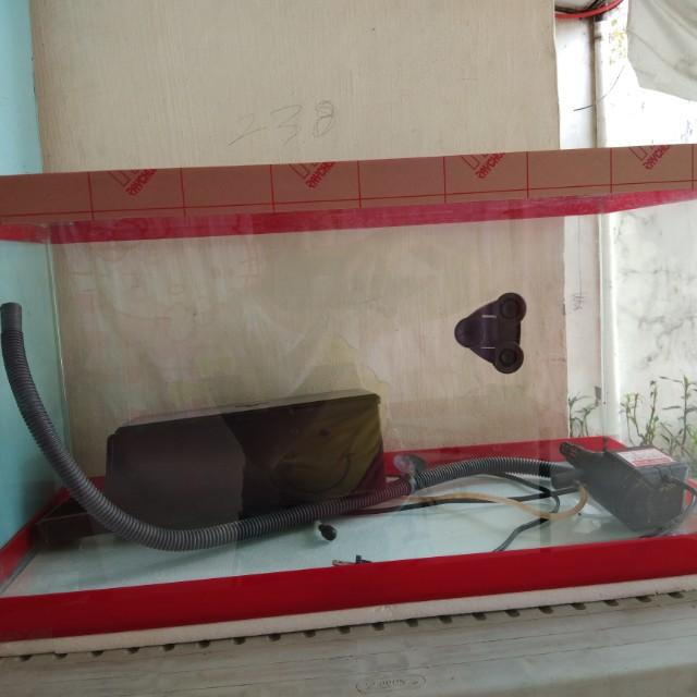 15 litres aquarium with motor filter