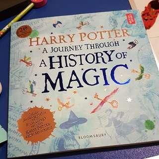 Harry Potter Xmas present